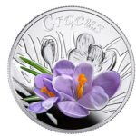 Belarus - 2013 - 10 Roubles - Under the Charm of Flowers CROCUS (PROOF)