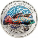 Palau - 2013 - 5 dollars - Synchiropus splendidus  (including box) (PROOF)