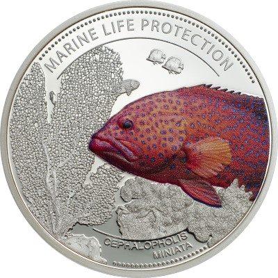 Palau - 2016 - 1 Dollars - Marine life CORAL HIND CUNI (PROOF)