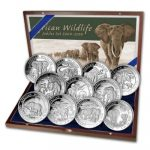 Somalia - 2014 - 11 x 100 Shilling - African Wildlife Elephant Jubilee Edition  (BU)