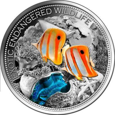 Fiji - 2013 - 20 Dollars - Exotic Endangered Wildlife GREAT BARRIER REEF (ANTIQUE)