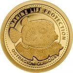Palau - 2014 - 1 Dollar - Yellow Boxfish GOLD ()