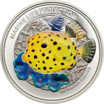 Palau - 2014 - 1 Dollar - Yellow Boxfish (including box) (PROOFLIKE)