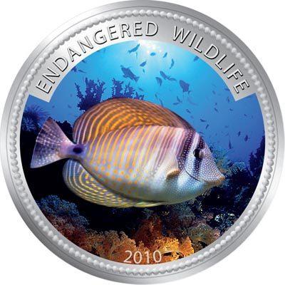 Palau - 2009 - 1 Dollar - Indian Ocean Sailfi n Tang (PROOF)