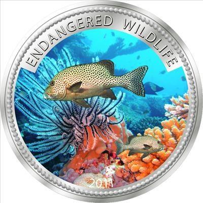 Palau - 2011 - 1 Dollar - Copper Rockfish (PROOF)