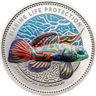 Palau - 2013 - 5 dollars - Synchiropus splendidus  (including box) (PROOF)