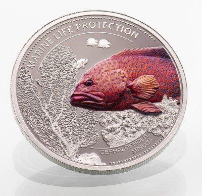 Palau - 2016 - 5 Dollars - Marine life CORAL HIND SILVER (including box) (PROOF)