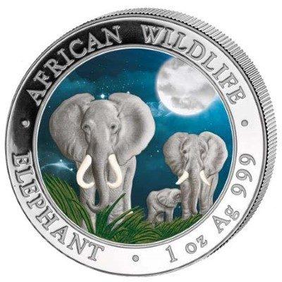 Somalia - 2014 - 100 Shilling - African Wildlife Elephant Colored Night  (BU)