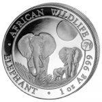 Somalia - 2014 - 100 Shilling - African Wildlife Privy-Mark Horse Elephant (BU)
