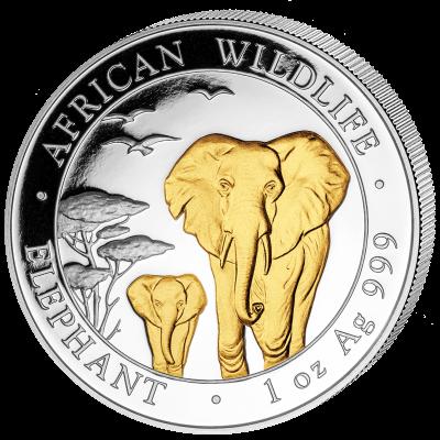 Somalia - 2015 - 100 Shillings - African Wildlife Elephant Gold Plated (BU)