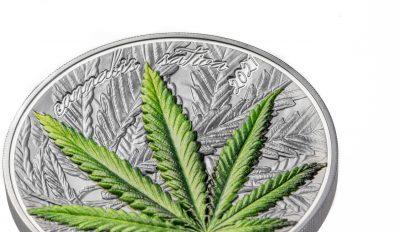 Benin - 2021 - 1000 Francs - Cannabis Sativa Black Proof